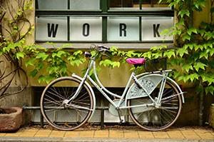 Work Bicycle